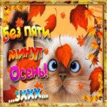 Красивые мерцающие открытки осень