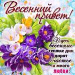 Красочные открытки весенний привет